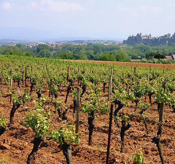 La région de Carcassonne